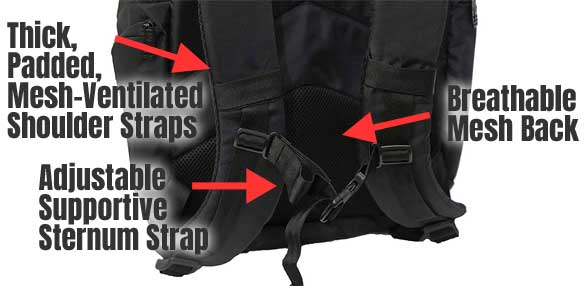 Fitness Backpack Straps and Padding