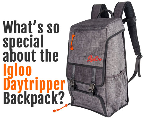 What is So Special About the Igloo Daytripper Backpack Cooler?