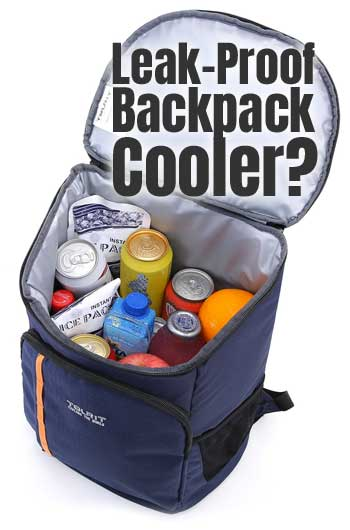 Leak Proof Backpack Cooler for Drinks, Lunch, Camping, Picnics