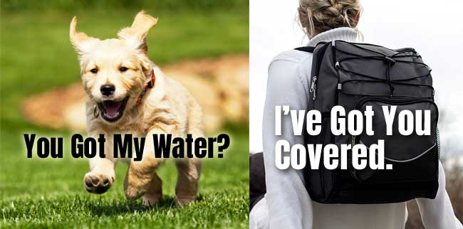 Carrying Water for Your Dog in a Backpack Cooler